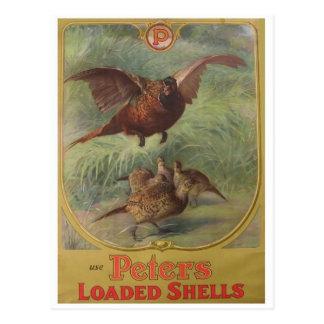 Vintage Ad Poster Postcard