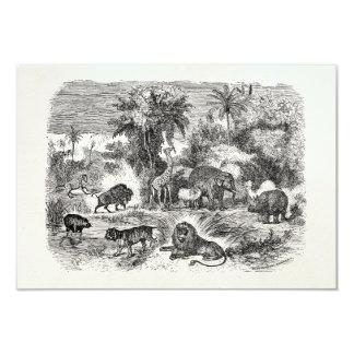"Vintage African Animals Giraffe Elephant Lion Hog 3.5"" X 5"" Invitation Card"