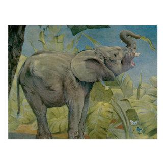 Vintage African Elephant in the Jungle, EJ Detmold Postcard