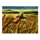 Vintage Agricultural Farm Business, Wheat Farming Postcard