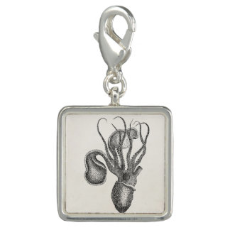 Vintage Agronaut Squid Octopus - Aquatic Template Charm