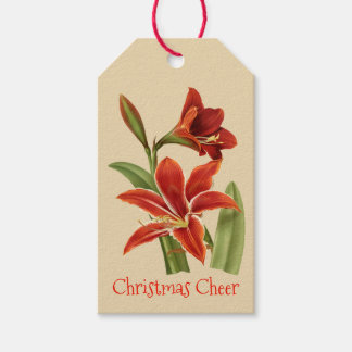 Vintage Amaryllis Christmas Cheer Gift Tags