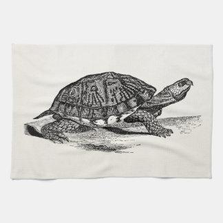 Vintage American Box Tortoise - Turtle Template Hand Towels