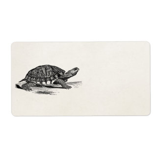 Vintage American Box Tortoise - Turtle Template Shipping Label