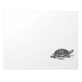 Vintage American Box Tortoise - Turtle Template Note Pad