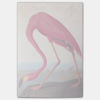 Vintage American Pink Flamingo Audubon Bookplate Post-it Notes