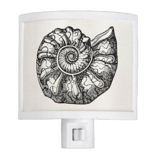 Vintage Ammonite Seashell Fossil Shell Template Night Lites