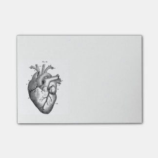 Vintage Anatomical Drawing Human Heart Post-it Notes
