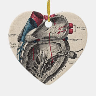Vintage Anatomical Heart Ceramic Ornament