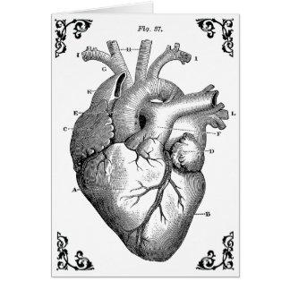 Vintage Anatomical Heart Diagram Gothic Card