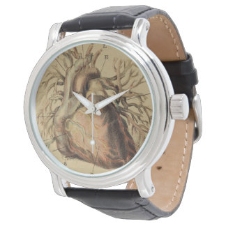 Vintage Anatomical Heart Illustration Drawing Watch