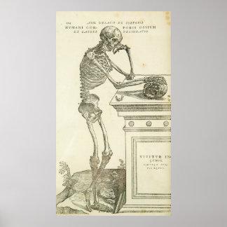 Vintage Anatomy Andreas Vesalius Skeleton Poster