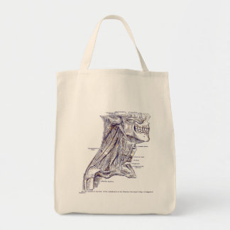 Vintage Anatomy Art Muscles of the Neck Sepia Tote Bag