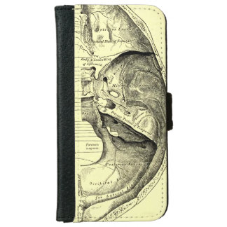 Vintage Anatomy | Base of the skull Inner surface iPhone 6 Wallet Case