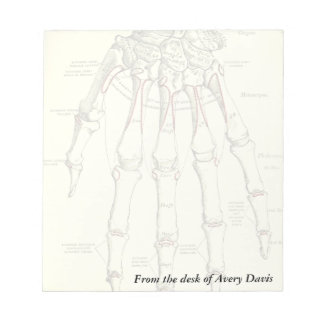 Vintage Anatomy | Bones of the Hand Notepad