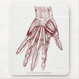 Vintage Anatomy Drawing Muscles of the Hand Red Mouse Pad