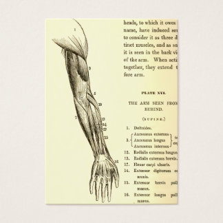 Vintage Anatomy | Muscles of the Arm  (circa 1852) Business Card