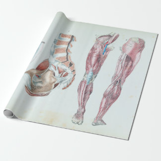 Vintage Anatomy of Human Legs and Feet Wrapping Paper