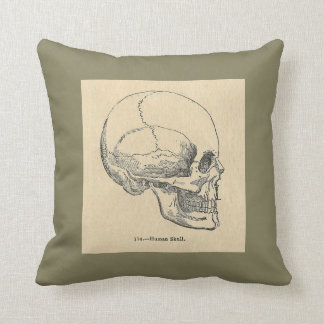 Vintage Anatomy Skull Throw pillow