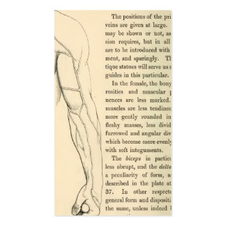 Vintage Anatomy | Veins of the Arm  (circa 1852) Double-Sided Standard Business Cards (Pack Of 100)