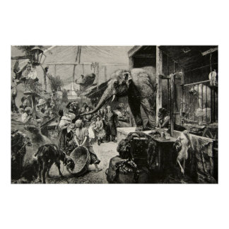Vintage Animal Elephant Zoo Engraving Children Poster