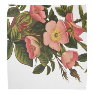 Vintage Antique Art Rose Flower Art Illustration Bandana
