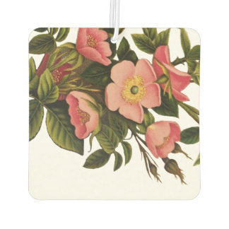 Vintage Antique Art Rose Flower Art Illustration Car Air Freshener