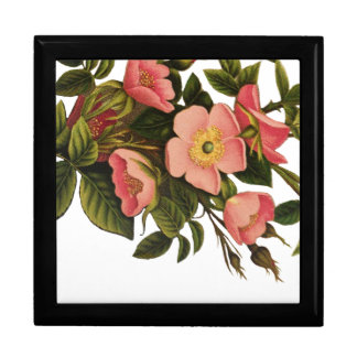 Vintage Antique Art Rose Flower Art Illustration Gift Box