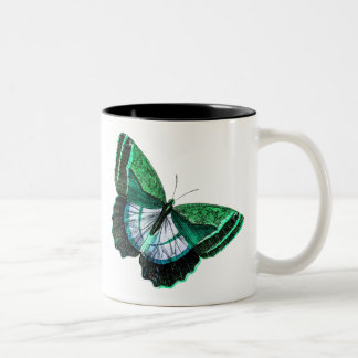 Vintage Antique Green Butterfly 1800s Illustration Two-Tone Coffee Mug