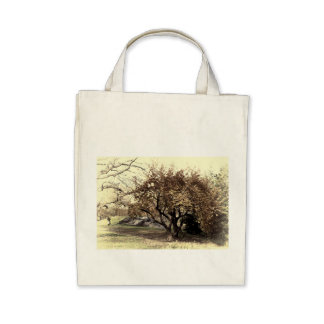 Vintage Antiqued Landscape Photo of Central Park Tote Bags
