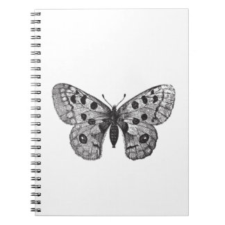 Vintage Apollo Mountain Butterfly Notebooks