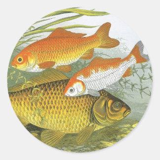 Vintage Aquatic Goldfish Koi Fish, Marine Sea Life Classic Round Sticker