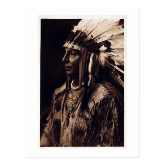 Vintage Arikara Chief Postcard