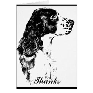 Vintage Art Springer Spaniel Thank You Card