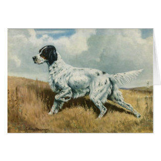 Vintage Artwork - English Setter Dog, Card