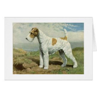 Vintage Artwork - Wire Fox Terrier Dog, Card