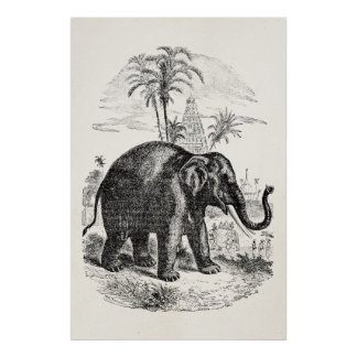 Vintage Asian Elephant Personalized Elephants Poster