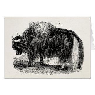 Vintage Asian Yak Retro Yaks Animal Illustration Card