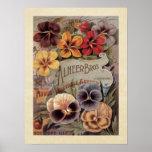 Vintage Assorted Pansies Seed Packet Poster