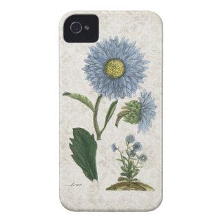 Vintage Aster flower on grunge damask background iPhone 4 Case-Mate Case
