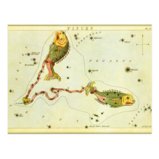 Vintage Astrology Pisces Fish Constellation Zodiac Post Card