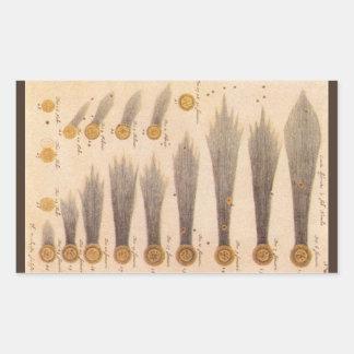 Vintage Astronomy, Comets by Stanislaw Lubieniecki Sticker