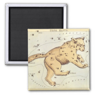 Vintage Astronomy, Ursa Major Constellation, Bear Magnet