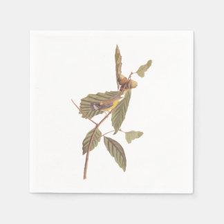 Vintage Audubon Magnolia Warbler Bird Napkin