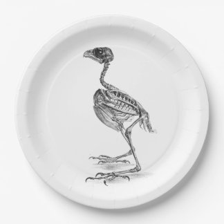 Vintage baby bird skeleton etching 9 inch paper plate