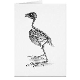 Vintage baby bird skeleton etching card
