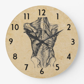 Vintage Back Anatomy Large Clock
