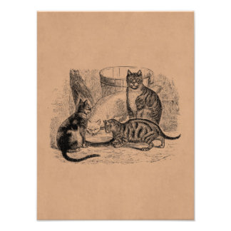 Vintage Barn Cats 1800s Cat Illustration Template Photo Print
