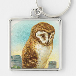 Vintage Barn Owl Keychain