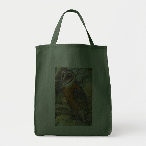 Vintage Barn Owl Painting Canvas Bag